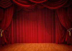 Отборочный тур VIII Областного фестиваля школьных театральных коллективов на немецком языке «Играем-Учимся»